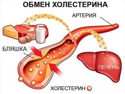 Кровь на сахар и холестерин что нельзя кушать перед
